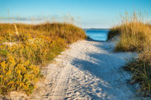 Sand dune at Panama City Beach